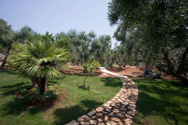 Villa-Bianca-in-Apulia-Italy-13